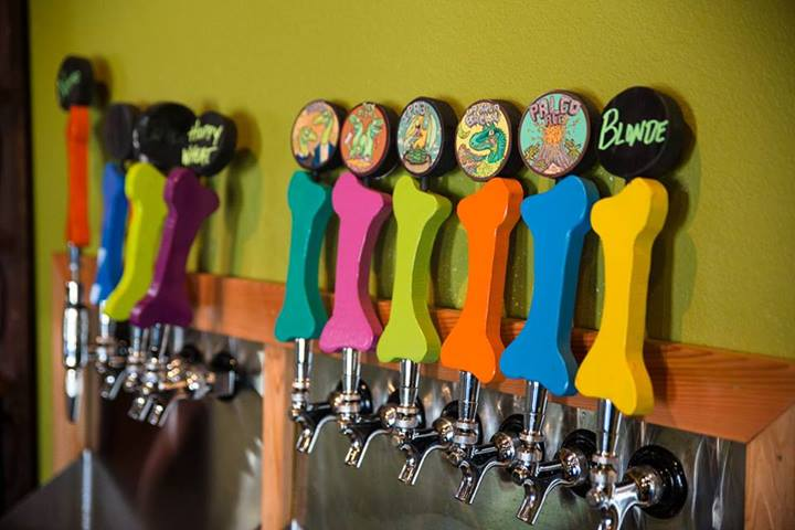 Taps at Fossil Cove Brewery