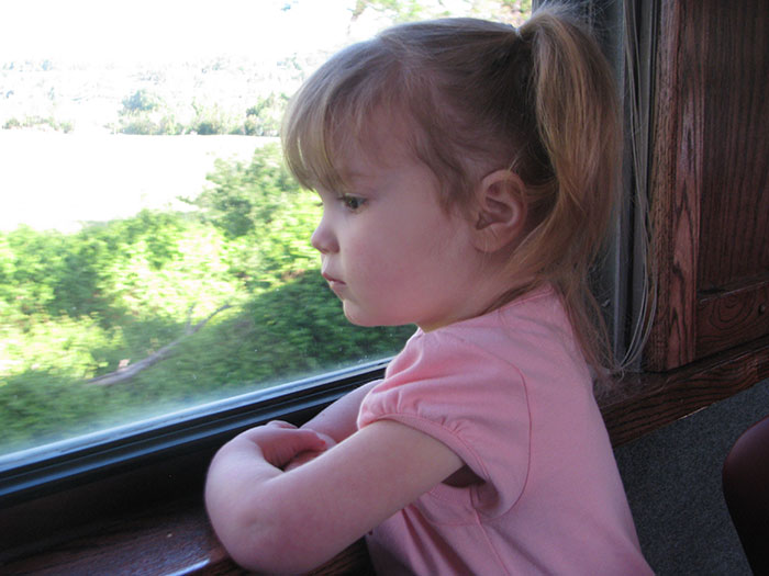 Emmy At The Excursion Train Window