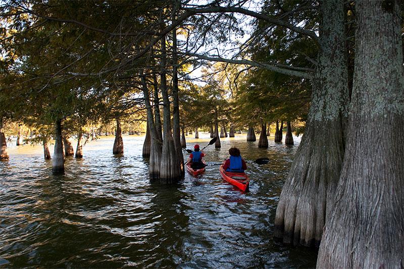 Kayaking Lake Chicot State Park