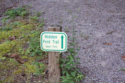 Sugar-Loaf-HiddeenPond, Hiking Sugar Loaf Mountain, Only In Arkansas