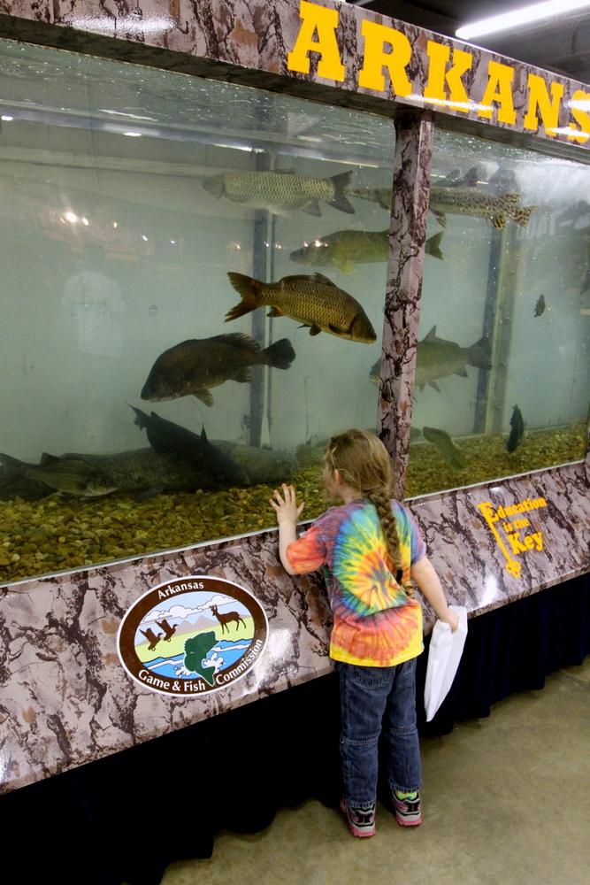AR State Fair Game & Fish