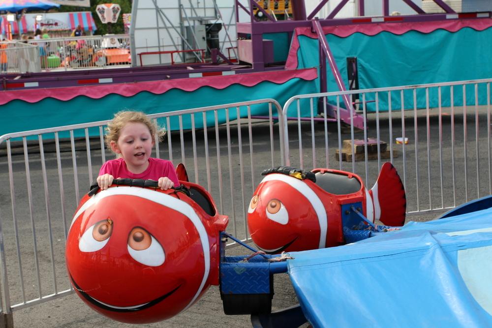 Ar State Fair rides