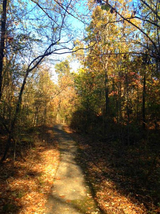 Chalk Bluff Civil War Battlefield