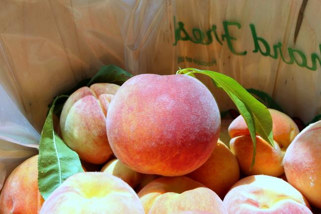 Lamar Peach Pickin Paradise by Kat Robinson (11)