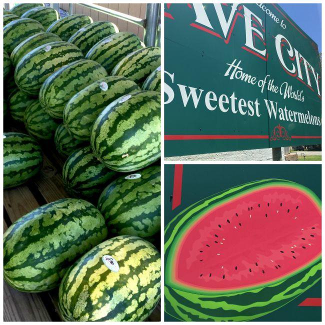 watermelon collage