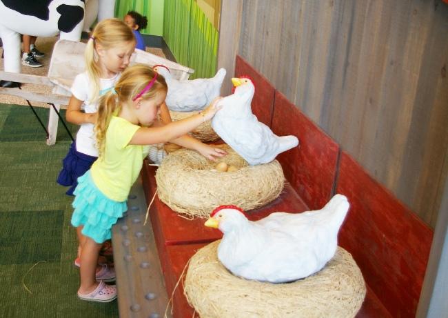 Amazeum chicken coop 2015