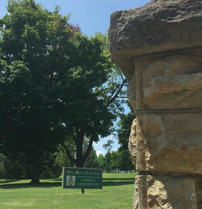 Old Main Campus Arboretum
