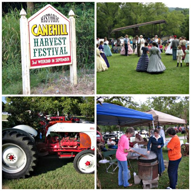 Cane Hill Harvest Festival Collage