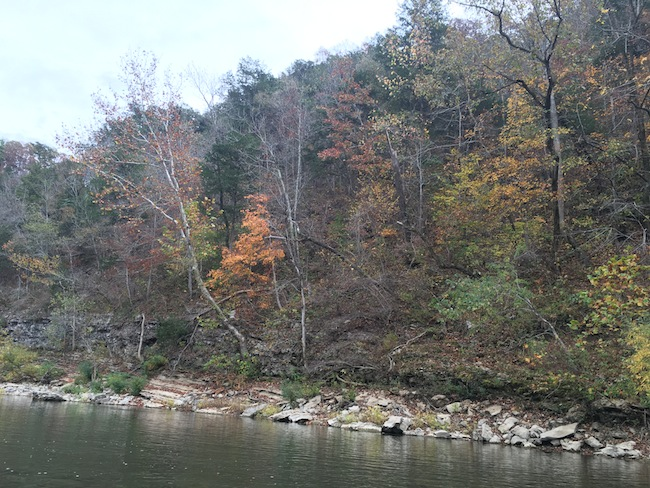 6 Scenic Spot on the Buffalo River near Grinder's Ferry