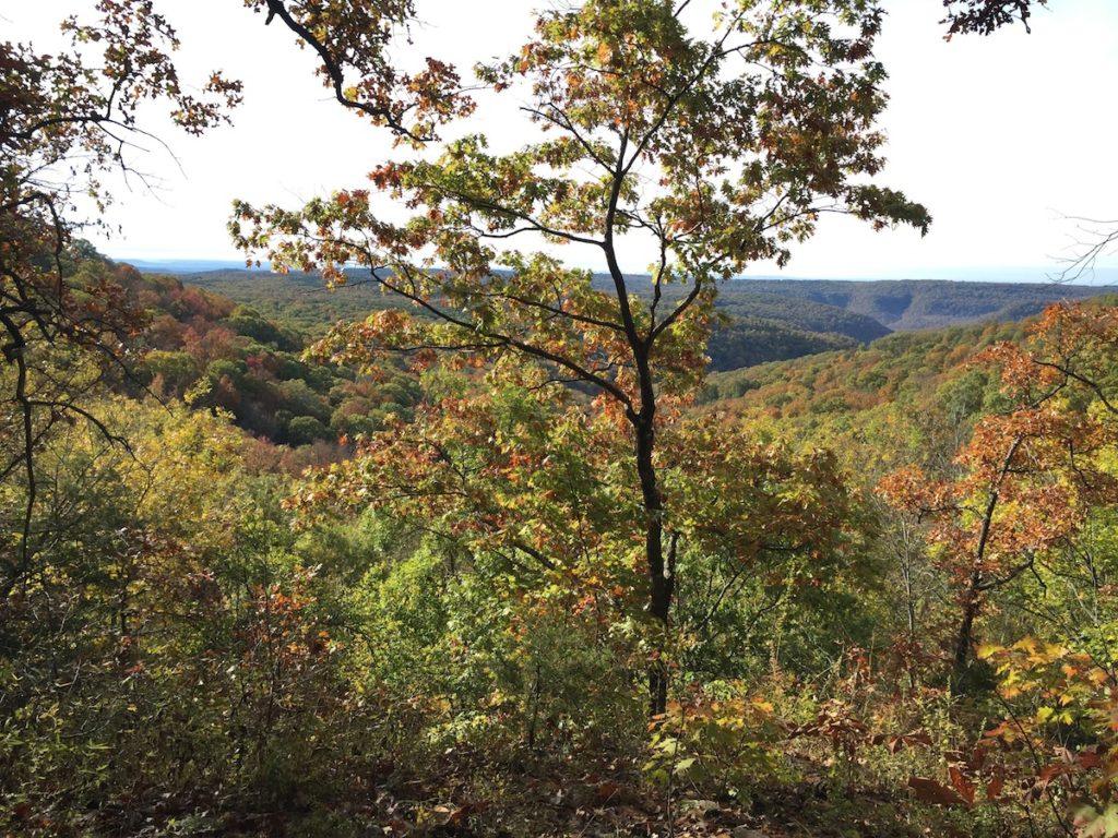Banner Colorful Trees and mountains on the Ozark Highlands Trail