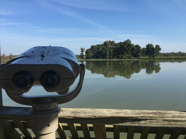 Big Lake - binoculars