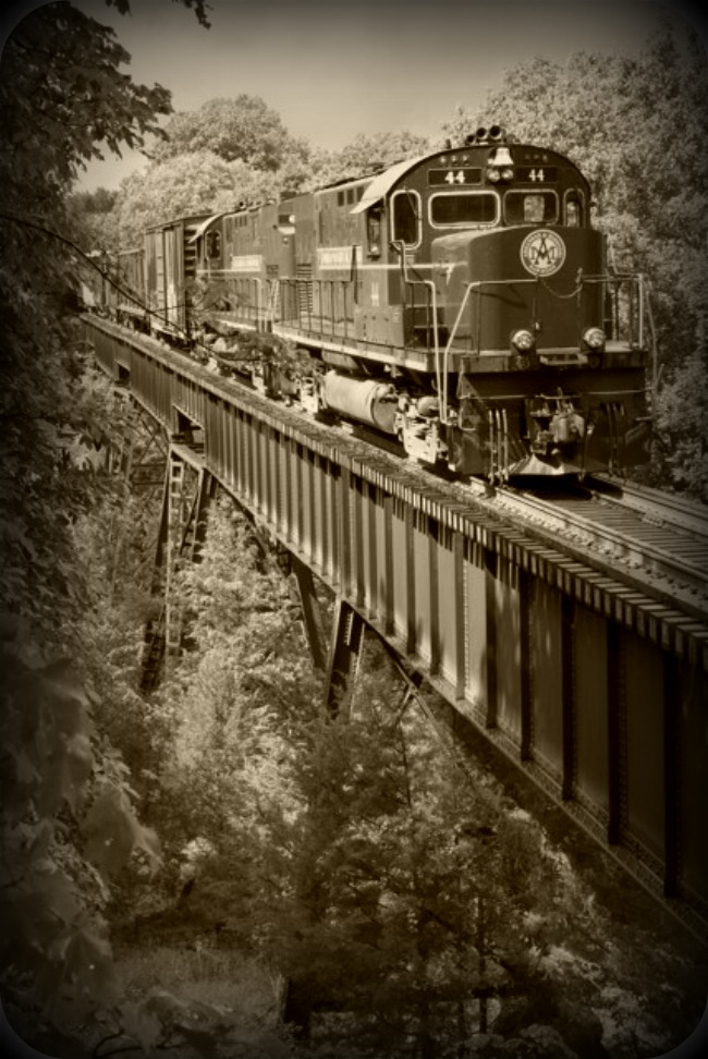 Black and White Train over Bridge