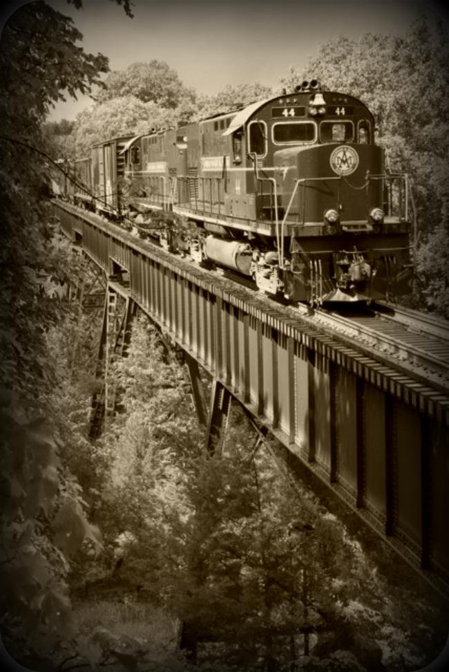 Black and White Train over Bridge