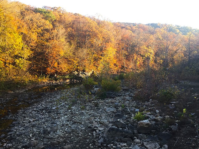 Dried up Creek on the Ozark Highlands Trail