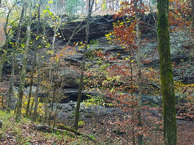 Sandstone Bluff with Colorful Trees on the Ozark Highlands Trail