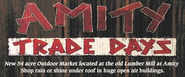 Amity Trade Days
