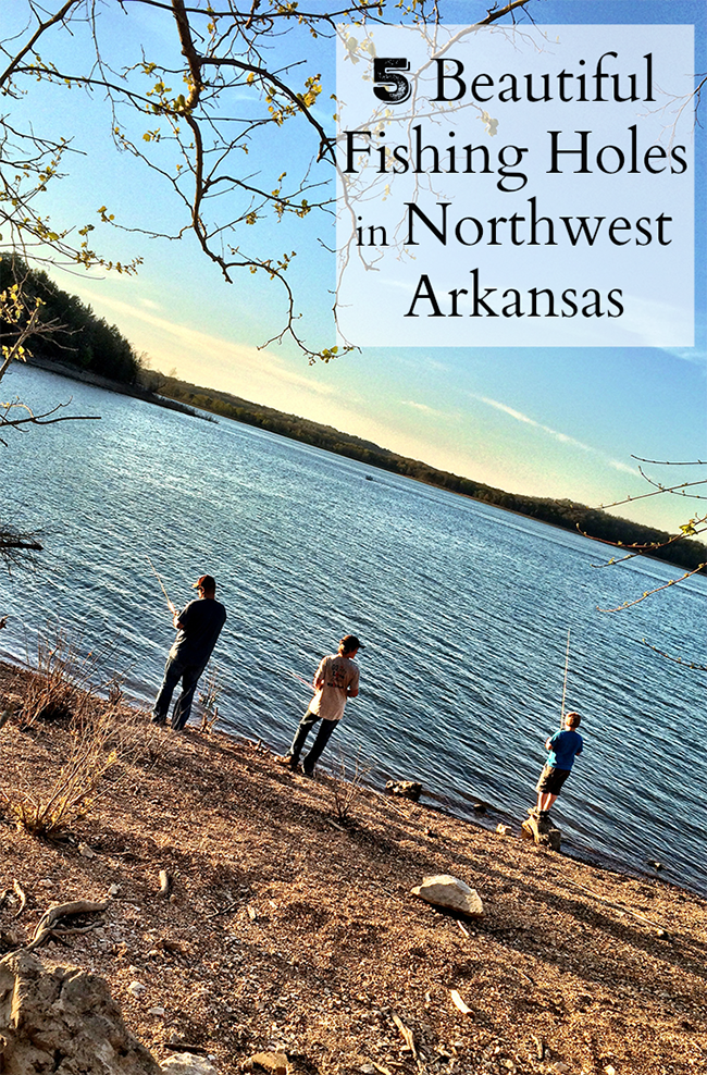 5 beautiful fishing holes in northwest arkansas only in for Fishing in arkansas