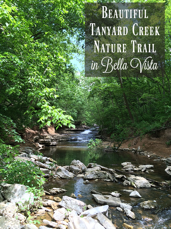 Beautiful Tanyard Creek Nature Trail in Bella Vista, Arkansas