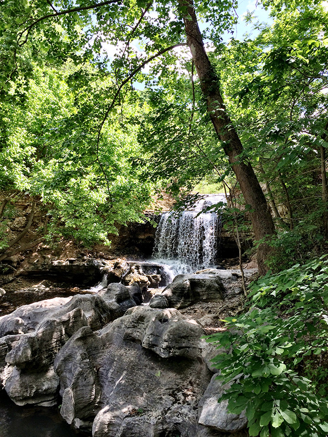 Waterfall on Tanyard Creek Nature Trail