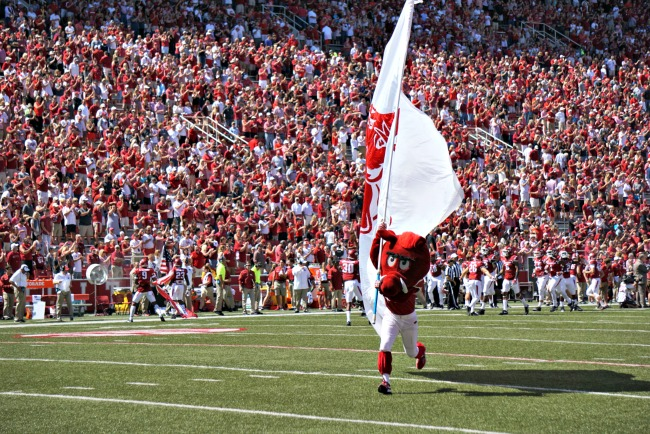 big-red-and-razorback-flag