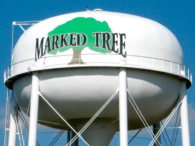 marked-tree
