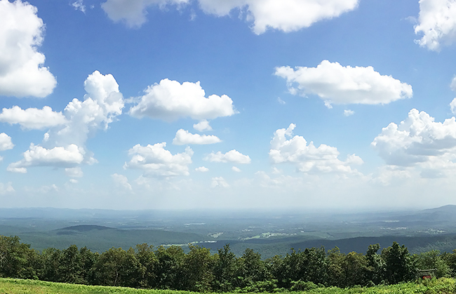 view-from-queen-wilhelmina-state-park