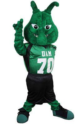 Arkansas Mascots
