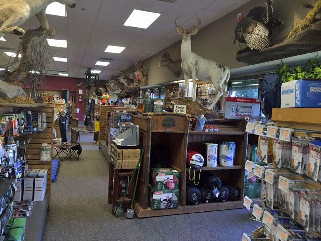 nite-lite-inside-store