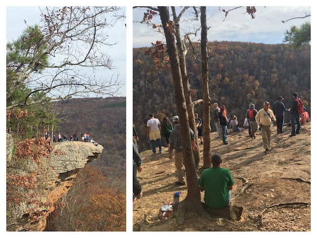 hawksbill-crag-whitaker-point-fall-hike-crowds