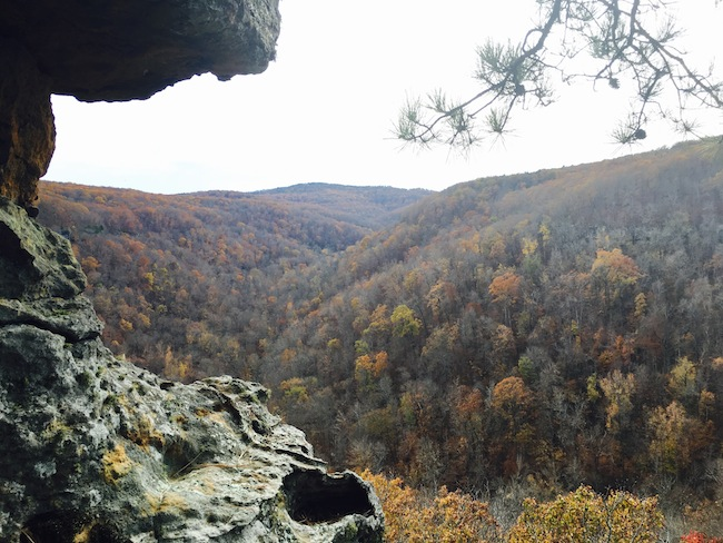 hawksbill-crag-whitaker-point-nearby-lookout-with-rocks