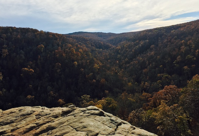 hawksbill-crag-whitaker-point-scenic-view