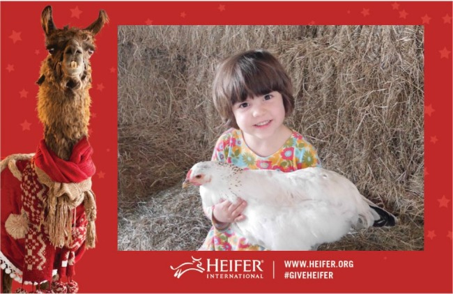 holiday-open-house-at-the-heifer-ranch