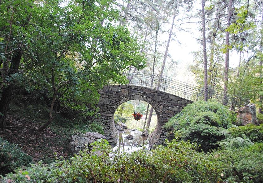 Botanical Garden of the Ozarks in Fayetteville