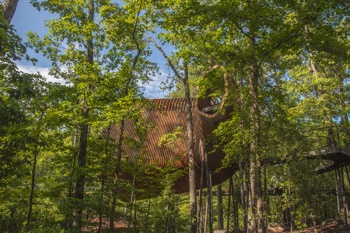 The Treehouse At Garvan Woodland Gardens Only In Arkansas