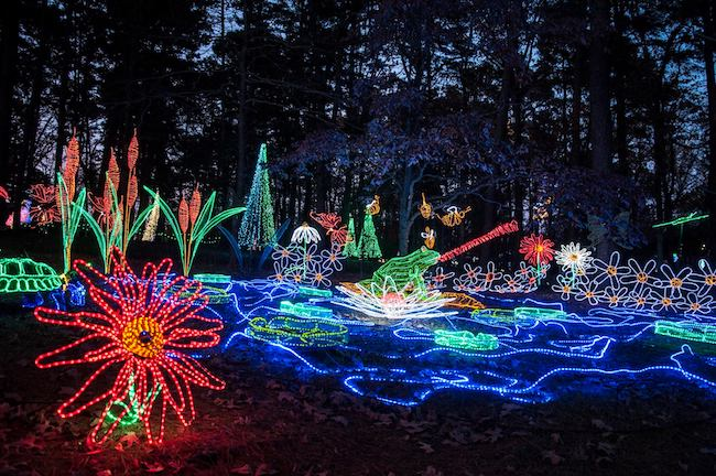 Lights Of Christmas.Christmas Lights In Arkansas 2018 Only In Arkansas