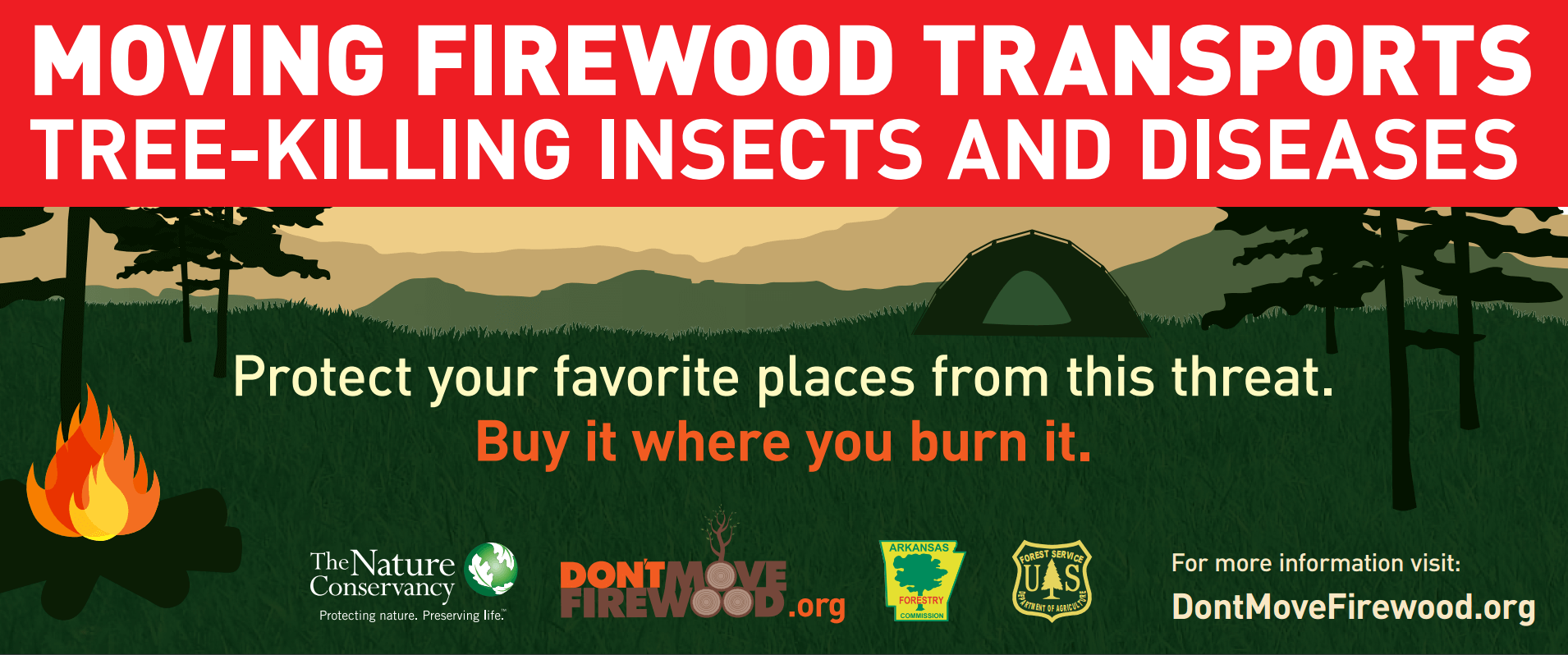 Don't Move Firewood! Protect Trees from the EAB   Only In