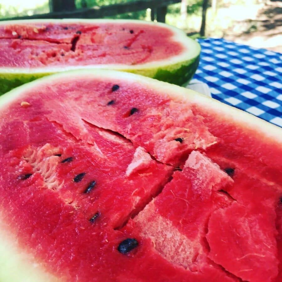 Cave City watermelon